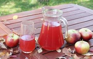 Kompot z żurawiny i jabłek