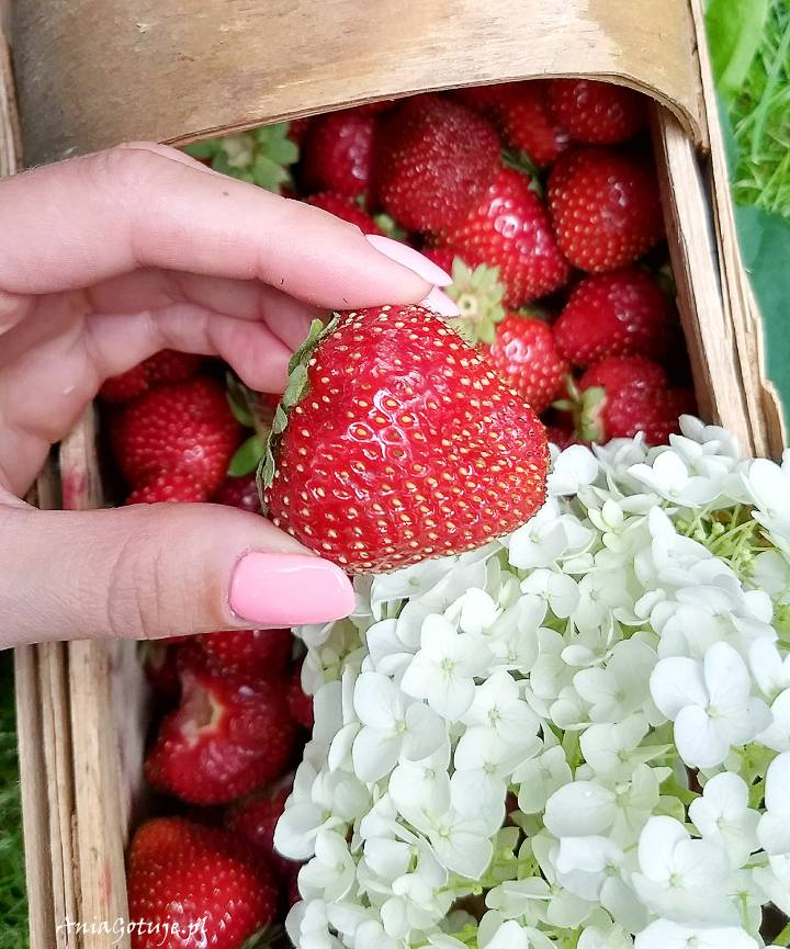 Lody truskawkowe, 2